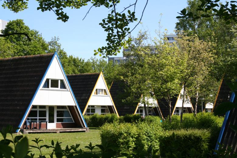 Nurhausdach Ferienhaus Ostsee Resort Damp