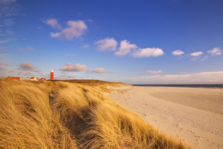 Texel Strand mit Leuchtturm